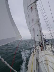 Romping through the Irish Sea