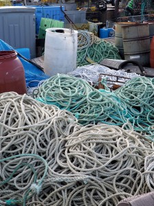 Fishing Lines on the Commercial Wharf