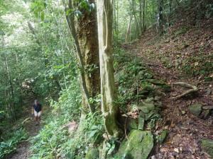 Steep climb...