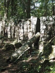 Overgrown Garrison Guns